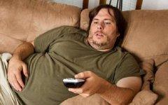 为什么肥胖更容易导致脱发