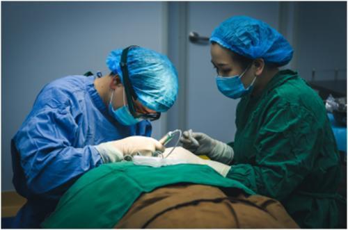郑州公立正规植发医院名单